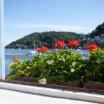 Holiday Cottage in Dartmouth